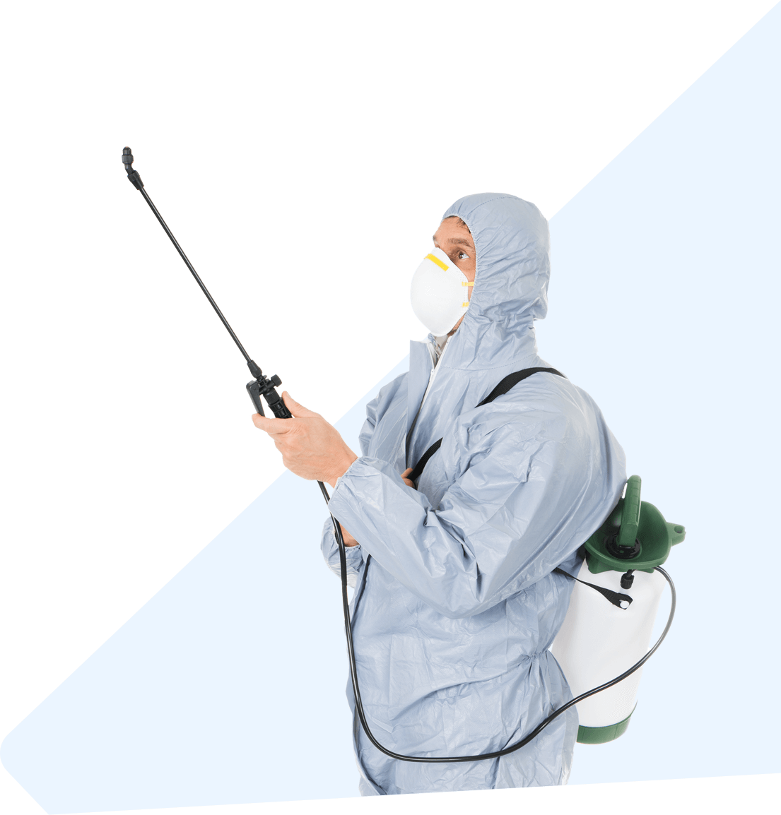 Best Pest Control Near Me - 468+ Reviewed, Find Us Now